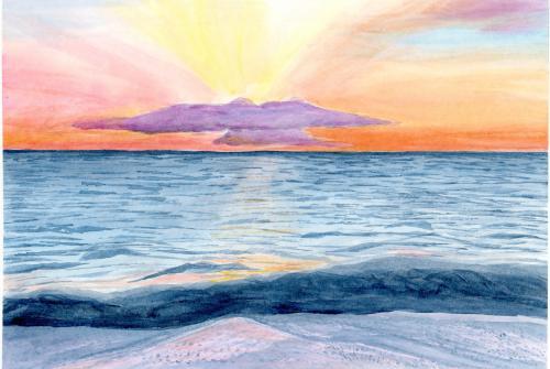 Maui Dove Sunset
