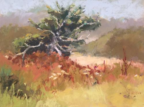 Hatfield Pine