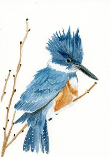 Aurae Beidler - Watercolor, Pen, Acrylic
